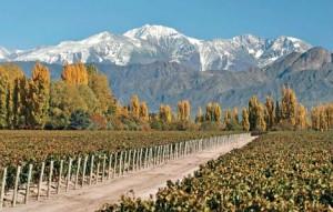 Viñas, y Los Andes presidiendo