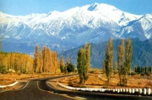 Paisaje otoñal con Los Andes al fondo